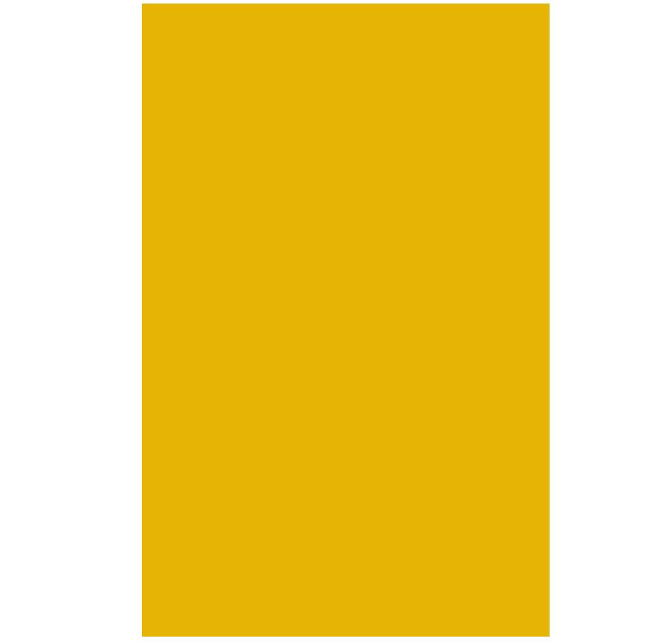 icon_seguro_vida
